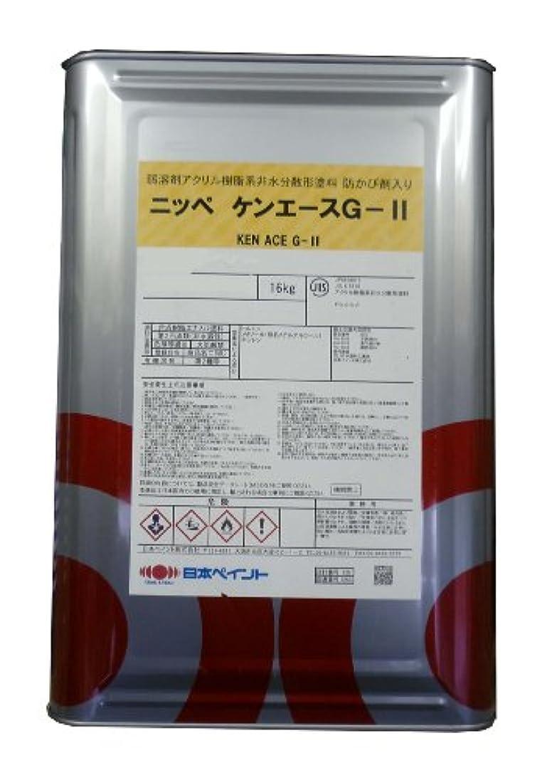 血まみれの中間経歴日本ペイント ケンエースGⅡ 黒 16kg