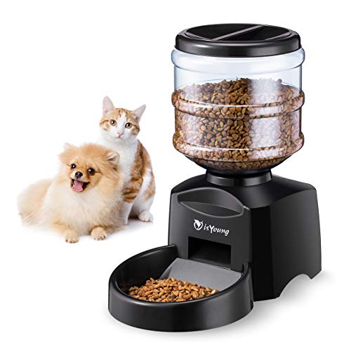 isYoung Comedero Automático 5.5 L de Alimentos para Mascotas Gatos y