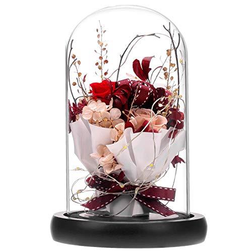 ANLUNOB Flor Fresca preservada con luz LED Rosa Hecha a Mano para Siempre Rose Regalo en cúpula de Vidrio La Bella y la Bestia Regalos para el día de la Madre Día de San Valentín Día de Navida