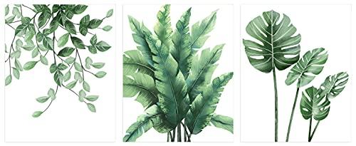 ANHUIB 3er Set Grüne Pflanzen Bilder,Moderne Poster,Premium Poster Set für Wohnzimmer,Aquarell Grüne Blätt Bilder,Stilvoll Monstera Wandbild Leinwand für Schlafzimmer...
