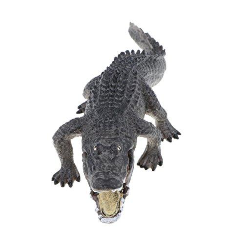 MagiDeal Juguete Realista Figura de Animales Salvajes de Imitación Plástico Modelo de Caballo/Bulldog/Avestrez/Cocodrillo - cocodrillo b