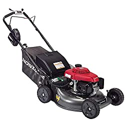 Best Push Mower For Tall People