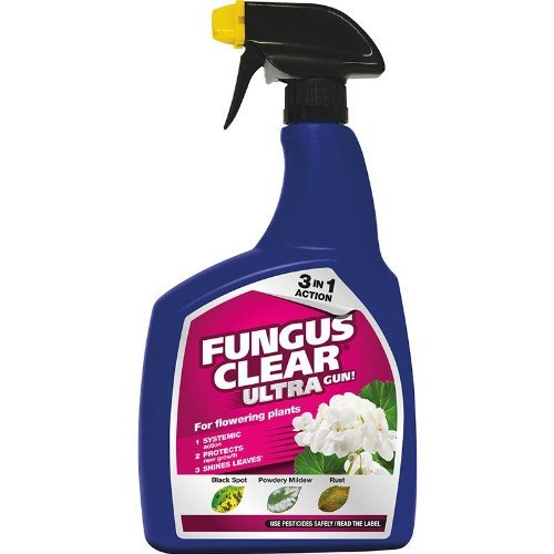 Scotts Fungus Clear Ultra Gun! 1LTR
