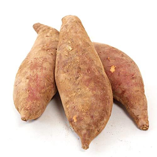 茨城産 シルクスイート(さつま芋)(低農薬) 3kg