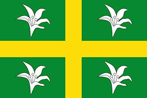 magFlags Bandera Large Paño Rectangular de Proporciones 1 1,5 de Color Verde Bandera   Bandera Paisaje   1.35m²   90x150cm