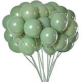 Fauge Globos de Color Verde Salvia, Globos de Fiesta Verdes de 10 Pulgadas, Globo para CumpleaaOs, Bodas, Baby Shower, Suministros para Fiestas o Arco