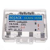 BOJACK T4AL250V 5x20mm 4A 250V Fusibili vetro soffiato lento 4 Ampere 250 Volt 0,2 x 0,78 pollici Fusibile di ritardo del tubo di vetro (confezione da 20 pezzi)