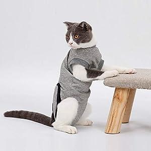 Mjjsk-Combinaison de récupération pour Chien, Chat, Protection Abdominale pour Chiot, Chiot, vêtements chirurgicaux, Gilet Post-opératoire pour Animal de Compagnie après Une Chirurgie
