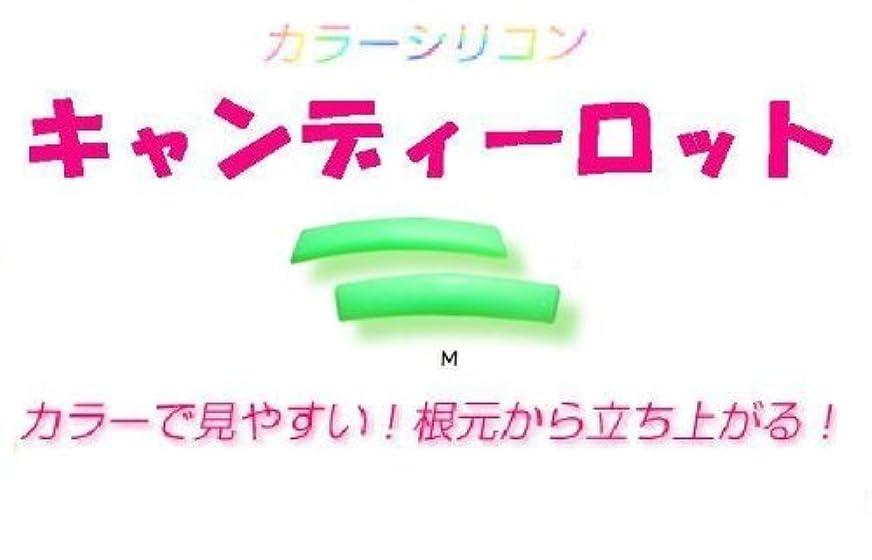 理解する楽しむ学んだキャンディーロット Mサイズ