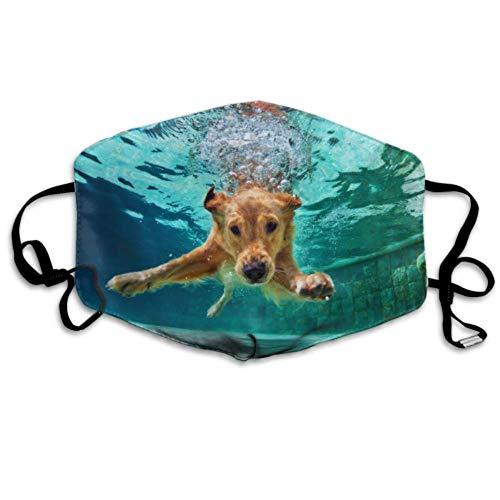 Hund Tauchen unter Wasser im Schwimmbad Bild Id8 Mundabdeckungen Gesichtsabdeckung Staubgesichtsabdeckungen Mundabdeckung