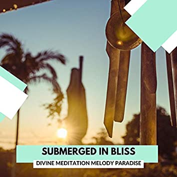 Submerged In Bliss - Divine Meditation Melody Paradise