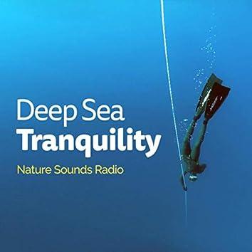 Deep Sea Tranquility