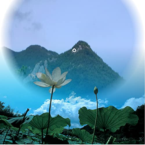 The Buddha in the Lotus Sutra and Won Buddhism (English Edition)