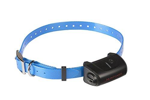 Num'Axes Extra Collar Canicom 5 Blue 1 Unidad 80 g