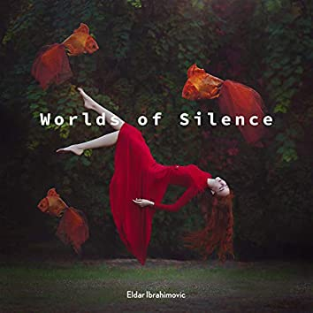 Worlds of Silence