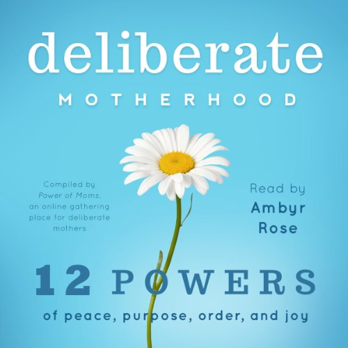 Deliberate Motherhood  By  cover art