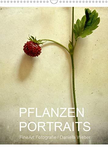 Pflanzenportraits FineArt Fotografie Daniela Weber (Wandkalender 2021 DIN A3 hoch): Fotografien im Stil eines klassischen Herbariums auf besondere Weise interpretiert (Monatskalender, 14 Seiten )