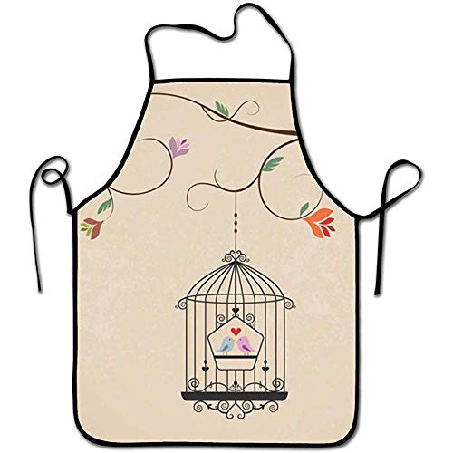Myrdora Colorful Apron Vintage Cage with Birds Bib Chef Apron Grilling Prepare for Family Man One Size