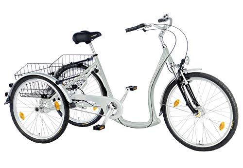 Wild Eagle Damen Deluxe Dreirad, Silber, Einheitsgröße