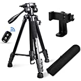 "Best Tripods - Torjim 60"" Camera Tripod with Carry Bag, Lightweight Review"