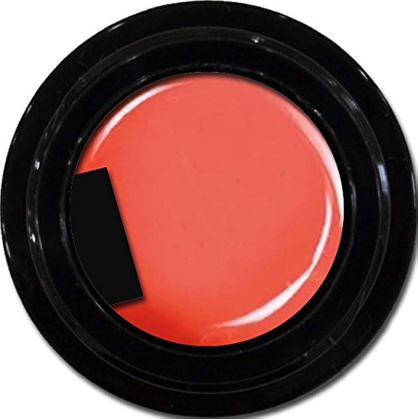 ミシン休みスキャンカラージェル enchant color gel M301 FuzzyNavel 3g/ マットカラージェル M301 ファジーネーブル 3グラム