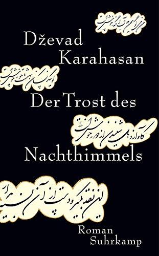 Der Trost des Nachthimmels: Roman (suhrkamp taschenbuch)