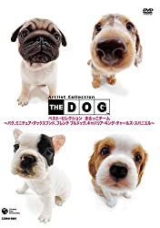 THE DOG ベスト・セレクション まるっこチーム ~パグ、ミニチュア・ダックスフンド、フレンチ・ブルドッグ、キャバリア・キング・スパニエル~ [DVD][Amazon]