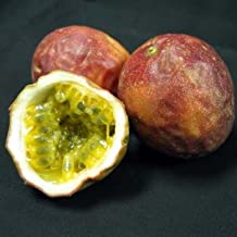 Fresh Passion Fruit Lilikoi [Passiflora Edulis] (2 Pounds)