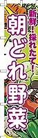 既製品のぼり旗 「朝どれ野菜」 短納期 高品質デザイン 450mm×1,800mm のぼり