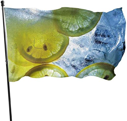 YJWLO erfrischende Limonade Seasonal Yard Garden Flags Seasonal Home Decoration for Indoor Outdoor 91,4 x 152 cm, Polyester, Schwarz , Einheitsgröße