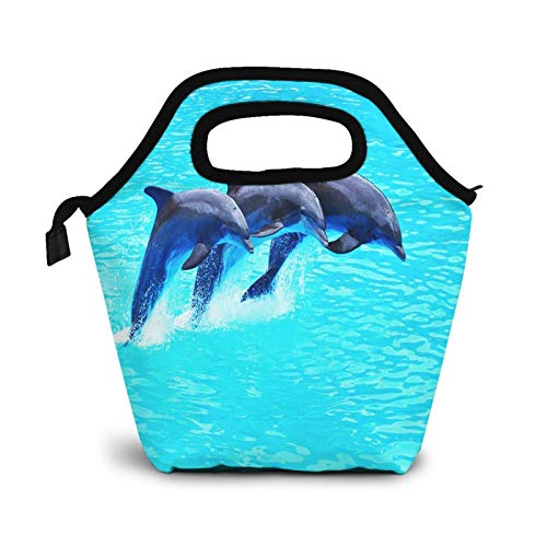Bolsa Térmica Comida Bolsas De Almuerzo para Mujeres Hombres Niñas Niños Bolsa Isotérmica De Almuerzo Nado con delfines nariz de botella
