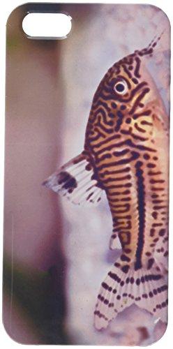 Leopard Cory PANZERWELS trilineatus Wels Aquarium Fisch Handy Schutzhülle iPhone5