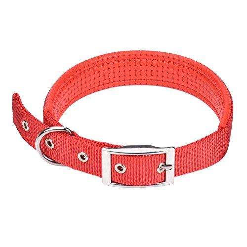 """Cuello de Perro Cómodo Cuello de Perro Ajustable con Hebilla fácil Nylon Fuerte Cuello de Perro Relleno Cuello de Mascota para Perros pequeños/medianos/Grandes,Collares básicos,Cuello 12""""-24"""""""