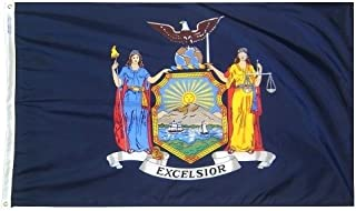 All Star Flags 3x5' New York State Flag - Heavy Weight Nylon Flag from