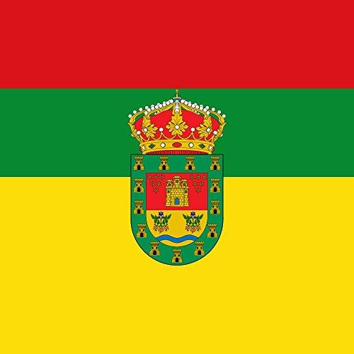 magFlags Bandera Large Municipio de Valle de Valdelucio Castilla y León   1.35m²   120x120cm