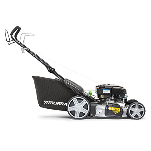 Murray EQ700X 21 Inch/53 cm Self-Propelled Petrol Lawnmower with Briggs & Stratton 750EX Series DOV Engine Including Mulching Plug