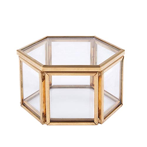 VANOLU Geometric Clear Glass Jewelry Box Jewelry Organizer Holder Tabletop Succulent Plants Container Home Jewelry Storage