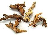 天然 マングローブ 流木 3個セット S(サイズ 約10~15cm位)