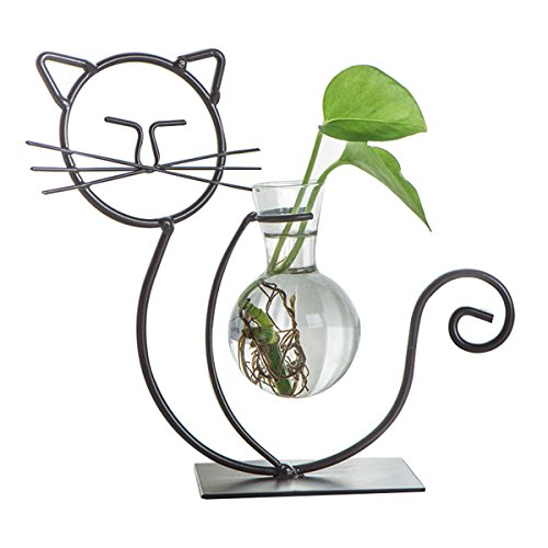 Metal-Home Netter Katzen Pflanzer Vasen Töpfe Blumen Glasvase dekorativ für Wasserpflanzen