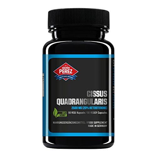 Cissus Quadrangularis Extrakt 2500 mg - 90 vegane Kapseln - liefert 20% Ketosterone - made in Germany - natürlich, aktiviert und mikronisiert