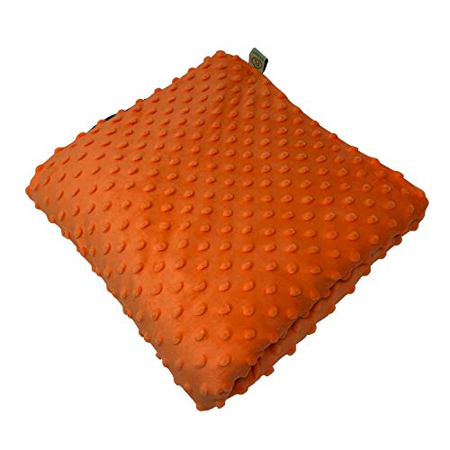 """BARMY Weighted Lap Pad for Kids (24""""x24"""", 5lbs, 6..."""
