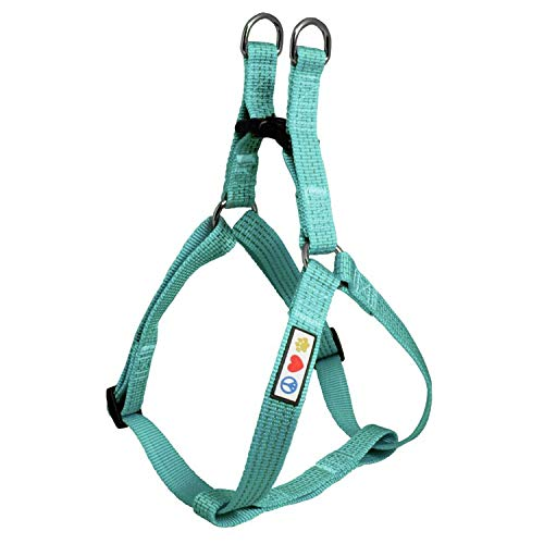 Pawtitas Reflective Step in Dog Harness or Reflective Vest Harness, Comfort Control, Training Walking of Your Puppy/Dog Medium Dog Harness M Teal Dog Harness