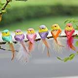 LWINGFLYER 12pcs Fake Bird with Clip Artificial Feather Foam Bird Christmas Tree Decor Perched Woodland Birds Ornament for Birthday Gift Bird Model 10cm/3.94inch (Clamp)