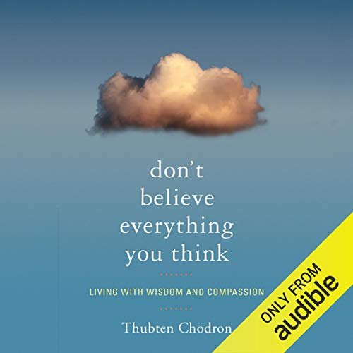 Don't Believe Everything You Think Titelbild