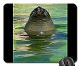 Yanteng Alfombrillas de ratón para Juegos, Alfombrilla de ratón, estación de Sello de Agua de Acuario Seal Ecomare Texel 4