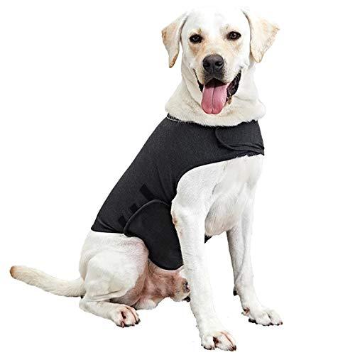 WingFly Hundemantel Beruhigungsweste Hund Anxiety Shirt Stressabbau für Hunde Angst Hundeangst Jacke Hundeentlastungs Haustier Kleidung Haustier Emotionale Beruhigend (M, Grau)