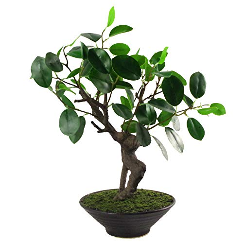 Leaf Hoja 40cm Artificial Árbol, Bonsai Ficus Natural, 40 cm