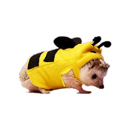Hedgehog  Bee Costume
