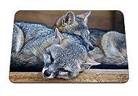22cmx18cm マウスパッド (アライグマカップル嘘) パターンカスタムの マウスパッド