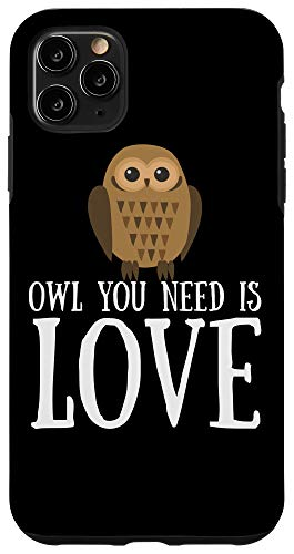 iPhone 11 Pro Max Funny Owl Lover Slogan Pun Gift Owl You Need Is Love Case